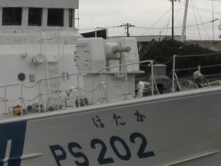 m61 (6).JPG